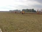 Турнир по футбол РИНГИ 2013